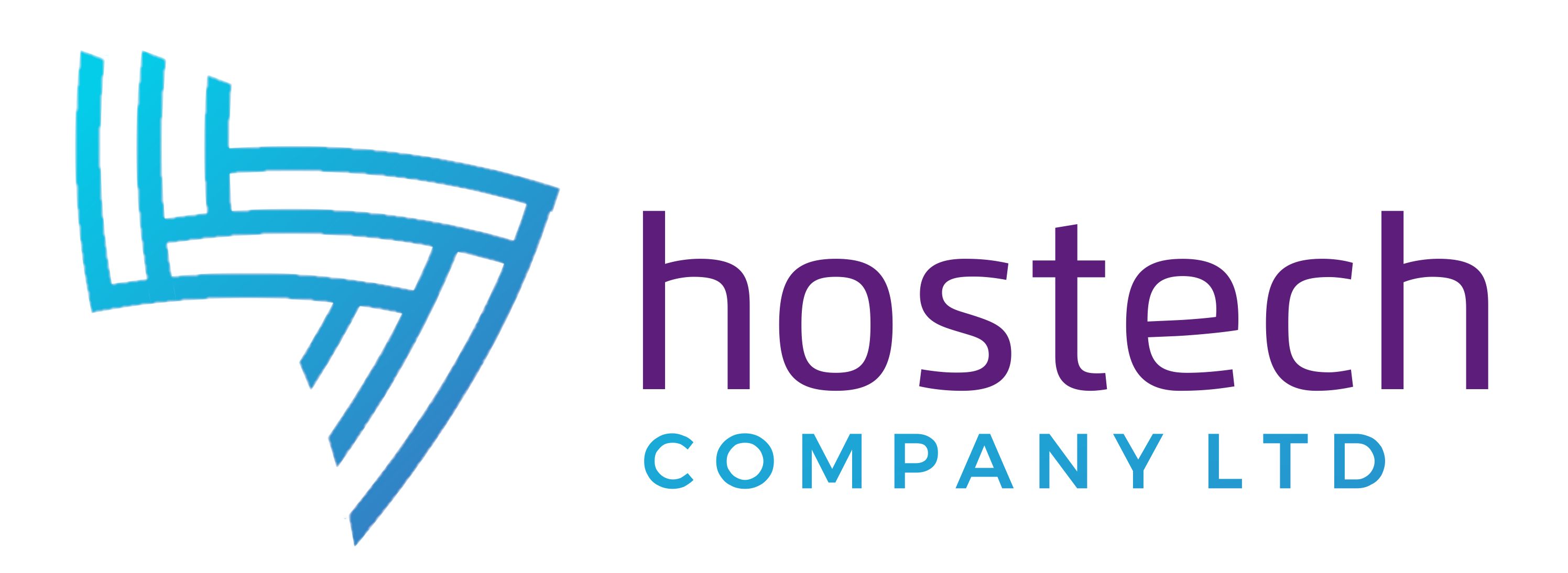 HOSTECH COMPANY LTD